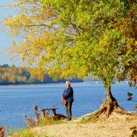 Осень в Гидропарке1 :: Ростислав
