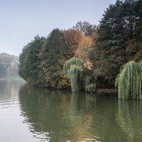 Осень :: валерий попов