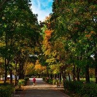 Прогулка в осеннем парке :: Sergey L