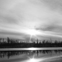 Север :: евгений Смоленцев