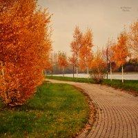 Краски осени :: Анастасия Светлова