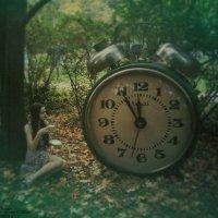 Time :: Elisa Wise