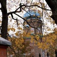 казацкая церковь :: Олег Рыжков