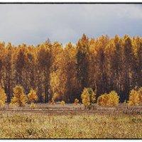 Эта осень к нам с тобой сошла с картины... :: Лилия *