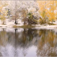 Осенняя акварель :: galina tihonova