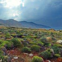 о.Крит...Греция... :: Александр Вивчарик