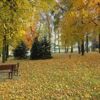 Осень, осень... :: Nonna