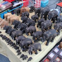 Стадо слонов :: Владимир Шибинский