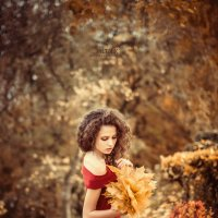 Autumn Leaves :: Сергей Пилтник