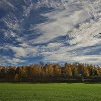 Штрихи и краски осени :: Владимир Макаров