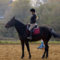 Верховая езда.. :: Олеся