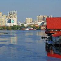 Осень в Гидропарке :: Ростислав