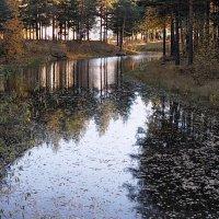 осень в парке :: Олег Петрушов