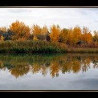 Осень на реке Алей :: Grishkov S.M.