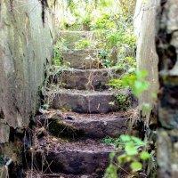 Лестница в ДОТ № 9 (2) :: Александр Морозов