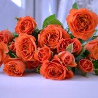 Цветы... :: Аnna M...
