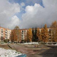 Золотая осень и первый зазимок :: Наталья Золотых-Сибирская