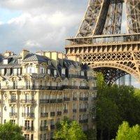 Париж :: Лена Михайленко