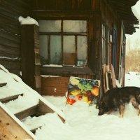 #24 :: Евгений Малыгин