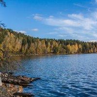 Октябрь на озере... :: игорь козельцев