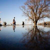 Даниил Максюков - Симметрия и весна :: Фотоконкурс Epson
