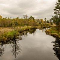 Осень :: Дмитрий Янтарев