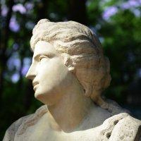 Античность :: SELESTA L.