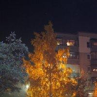 Вечерний блюз... :: Александр Герасенков