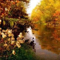 Золотая осень :: Александра