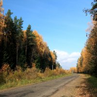 по дороге в деревню :: александр пеньков