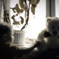 Первый лучший друг :: Дмитрий Васильев