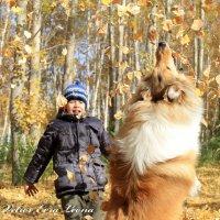 осенняя охота :: Анастасия Колесова