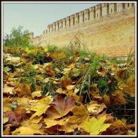 Осенний этюд. :: Игорь