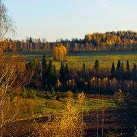 Осенний вечер. :: Валерий Молоток