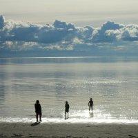 Белое море :: Ирина Л