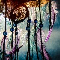 my fall dream cacher :: Lisa Buzova