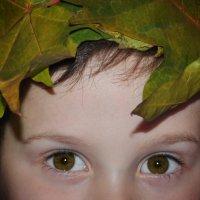 Глаза цвета осени :: Юлия Золотухина