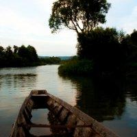 на озере :: Мила Солнечная