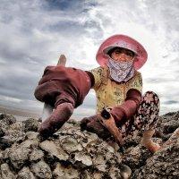 Собирательница устриц... :: Roman Mordashev
