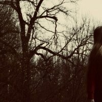 Загадочный лес. :: Анастасия Горбунова