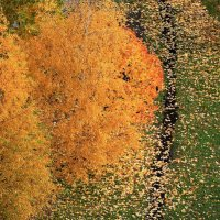 Золотая осень :: Анна Уварова