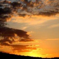 И золотом окутано небо :: Irina