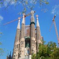 Базилика Святого Семейства, Барселона :: Dogdik Sem