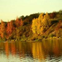 Осень на Волхове :: Алла Шулепина