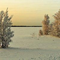 Морозный вечер :: Юрий Сименяк