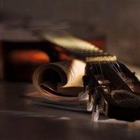 Один незримый музыкант моей души затронул струны :: Ирина Данилова