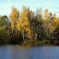 Осень :: Ксения ***