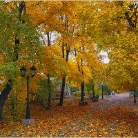 Осеннее... :: Анатолий __