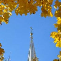 Осенняя благодать! :: Светлана Захаренко