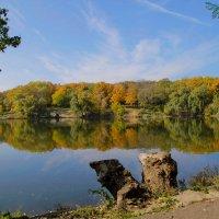 осень в Донецке :: Светлана Попова